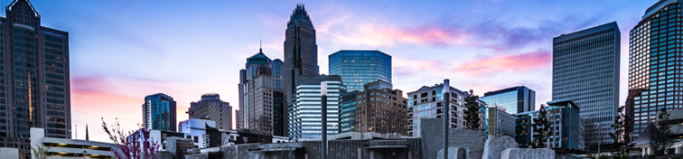 Charlotte's skyline from Romare Bearden Park in Uptown