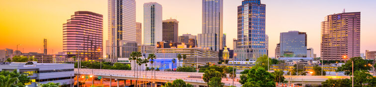 Palm trees and skyline of Tampa, Florida
